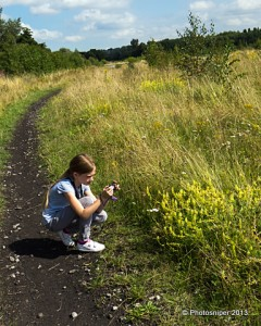 The Young Natualist